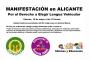 Manifestación en Alicante el viernes 19 de mayo. Derecho a elegir lengua vehicular
