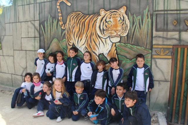 Visita al safari de Elche