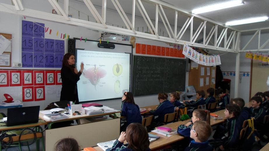 Visita de una bióloga al colegio