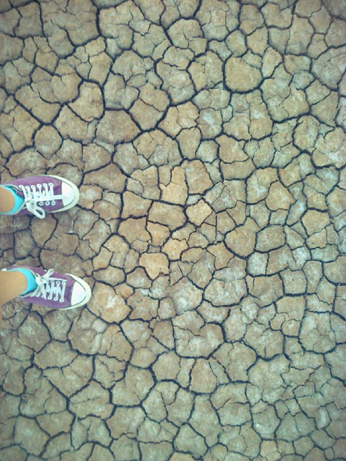 Vota - La sed de la tierra - Concurso Fotografía Científica