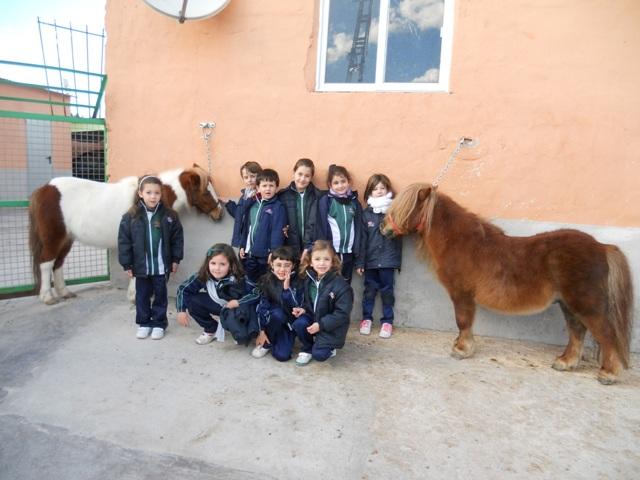Los alumnos/as de 1º visitan una granja.