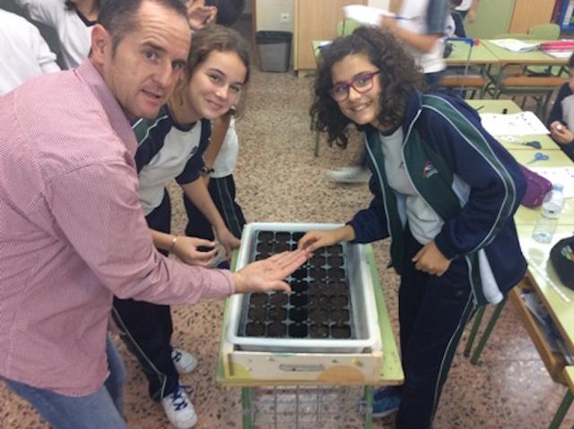 Realizamos un semillero en clase