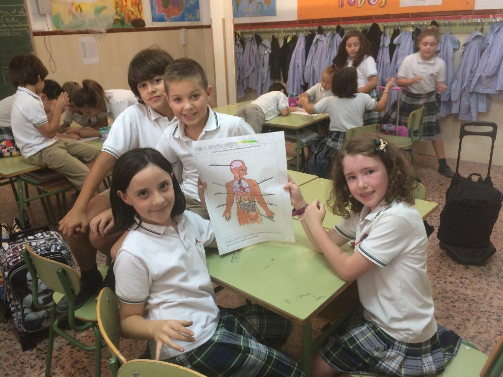 Los alumnos/as de Tercero de Primaria disfrutan con el Proyecto: El ser humano en la Tierra